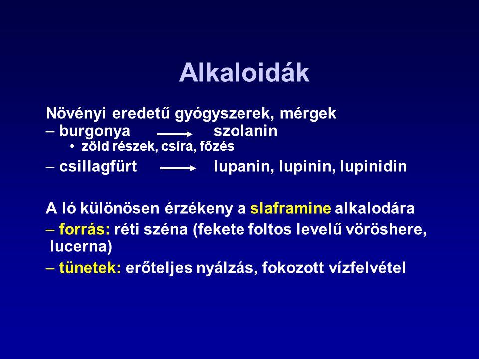 Ochratoxin Termeli: –Aspergillus alutaceus, Penicillium verrucosum Hatása: –fehérje szintézis gátlása (PHE - tRNS) –növeli a lipid peroxidációt –csökkenti a sejtlégzést, a glükoneogenézist, a sejtek ATP szintjét –elsősorban a vesét károsítja Az előfordulás gyakorisága és volumene alapján az ochratoxin A (OTA) a legjelentősebb.
