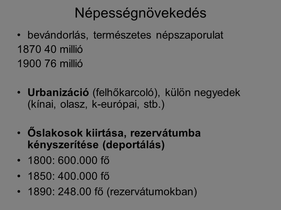 Népességnövekedés bevándorlás, természetes népszaporulat 1870 40 millió 1900 76 millió Urbanizáció (felhőkarcoló), külön negyedek (kínai, olasz, k-eur