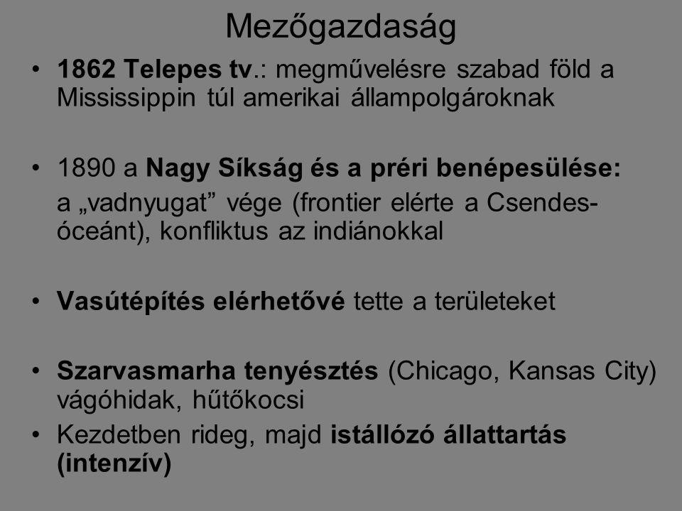 """Mezőgazdaság 1862 Telepes tv.: megművelésre szabad föld a Mississippin túl amerikai állampolgároknak 1890 a Nagy Síkság és a préri benépesülése: a """"va"""
