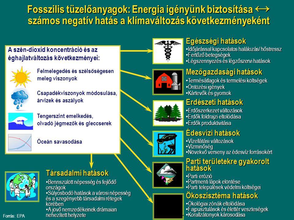 Fosszilis tüzelőanyagok: Energia igényünk biztosítása ↔ számos negatív hatás a klímaváltozás következményeként Mezőgazdasági hatások Termésátlagok és termelési költségek Termésátlagok és termelési költségek Öntözési igények Öntözési igények Kártevők és gyomok Kártevők és gyomok Édesvízi hatások Vízellátási változások Vízellátási változások Vízminőség Vízminőség Növekvő verseny az édesvíz forrásokért Növekvő verseny az édesvíz forrásokért Parti területekre gyakorolt hatások Parti erózió Parti erózió Partmenti lápok elöntése Partmenti lápok elöntése Parti települések védelmi költségei Parti települések védelmi költségei Erdészeti hatások Erdőszerkezet változások Erdőszerkezet változások Erdők földrajzi eltolódása Erdők földrajzi eltolódása Erdők produktivitása Erdők produktivitása Ökoszisztéma hatások Ökológiai zónák eltolódása Ökológiai zónák eltolódása Fajpusztulások és élettér veszteségek Fajpusztulások és élettér veszteségek Korallzátonyok károsodása Korallzátonyok károsodása Társadalmi hatások Bennszülött népesség és fejlődő országok Bennszülött népesség és fejlődő országok Súlyosbodó hatások a városi népesség és a szegényebb társadalmi rétegek körében Súlyosbodó hatások a városi népesség és a szegényebb társadalmi rétegek körében A jövő nemzedékeinek drámaian nehezített helyzete A jövő nemzedékeinek drámaian nehezített helyzete Egészségi hatások Időjárással kapcsolatos halálozás/ hőstressz Időjárással kapcsolatos halálozás/ hőstressz Fertőző betegségek Fertőző betegségek Légszennyezés és légzőszervi hatások Légszennyezés és légzőszervi hatások A szén-dioxid koncentráció és az éghajlatváltozás következményei: Tengerszint emelkedés, olvadó jégmezők és gleccserek Felmelegedés és szélsőségesen meleg viszonyok Csapadékviszonyok módosulása, árvizek és aszályok Óceán savasodása Forrás: EPA