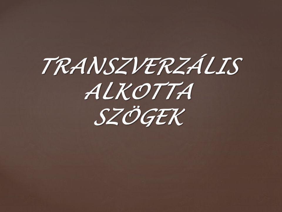transzverzális A transzverzális olyan egyenes amely két párhuzamos egyenest metsz