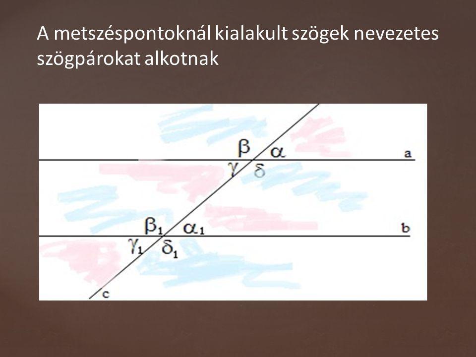 Párhuzamos szárú szögek: A párhuzamos szárú szögpárok szárai páronként párhuzamosak.
