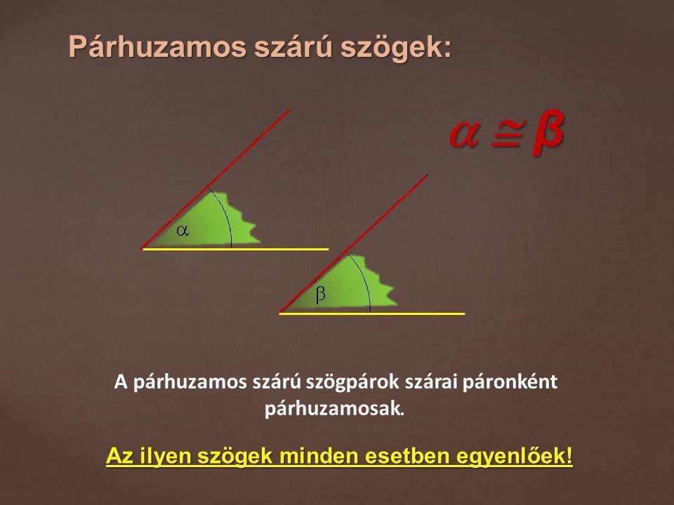 Párhuzamos szárú szögek: A párhuzamos szárú szögpárok szárai páronként párhuzamosak.   β  β  β  β Az ilyen szögek minden esetben egyenlőek!