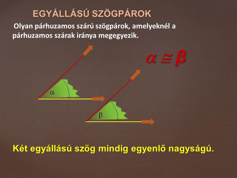 EGYÁLLÁSÚ SZÖGPÁROK Olyan párhuzamos szárú szögpárok, amelyeknél a párhuzamos szárak iránya megegyezik.   β  β  β  β Két egyállású szög mindig