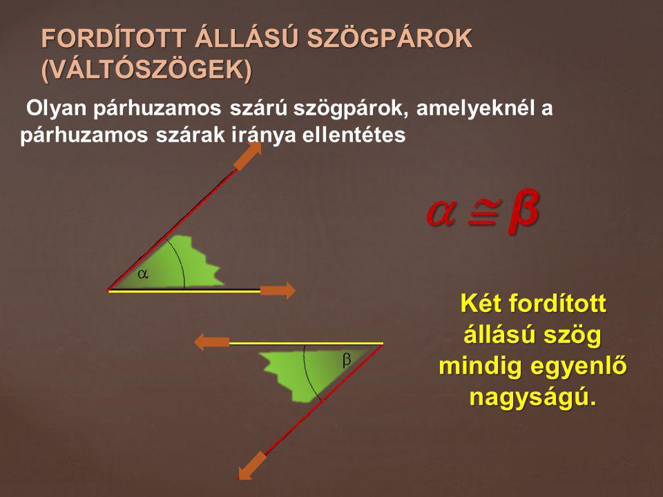 FORDÍTOTT ÁLLÁSÚ SZÖGPÁROK (VÁLTÓSZÖGEK) Olyan párhuzamos szárú szögpárok, amelyeknél a párhuzamos szárak iránya ellentétes   β  β  β  β Két f
