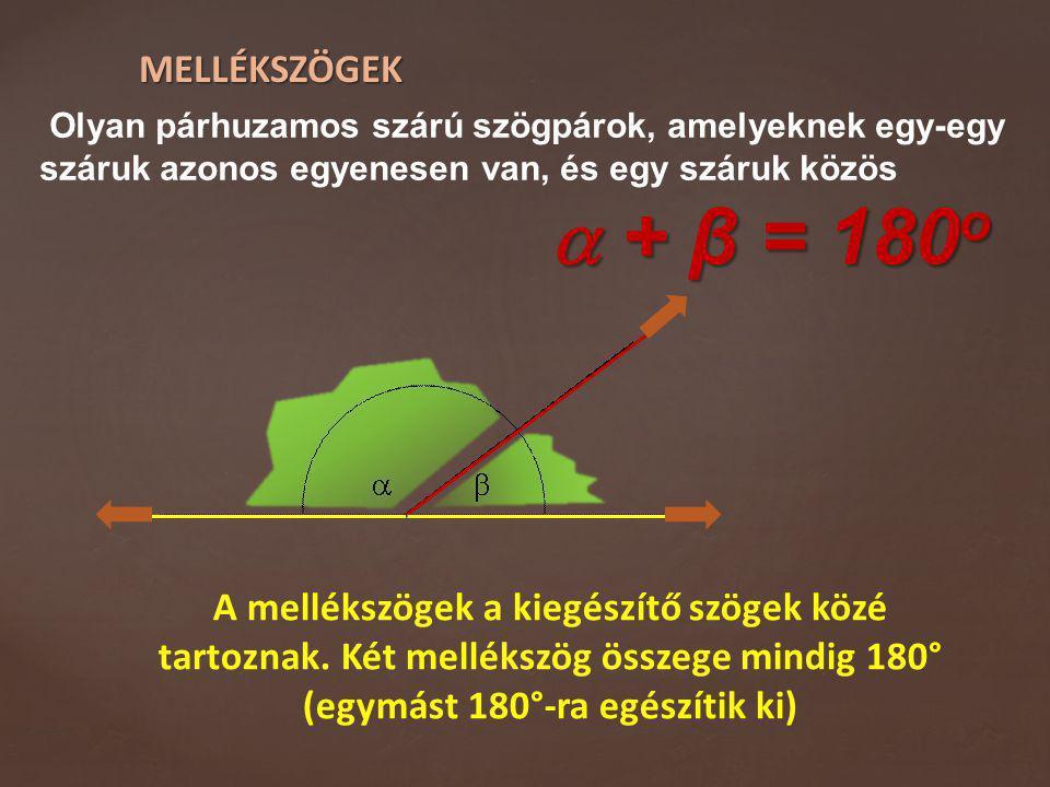 MELLÉKSZÖGEK Olyan párhuzamos szárú szögpárok, amelyeknek egy-egy száruk azonos egyenesen van, és egy száruk közös  + β = 180 o A mellékszögek a kieg