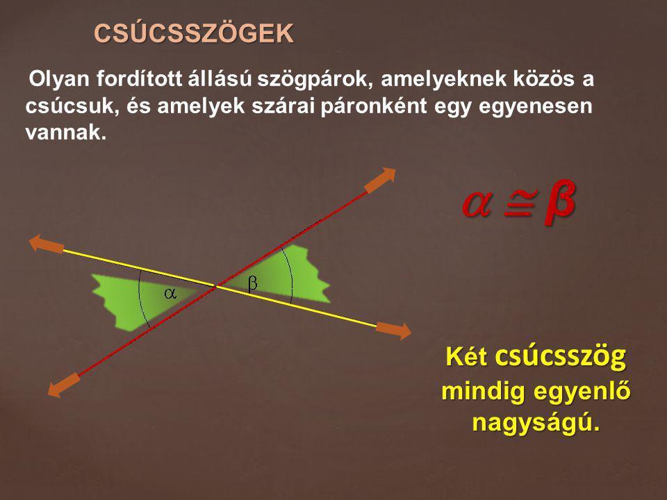 CSÚCSSZÖGEK Olyan fordított állású szögpárok, amelyeknek közös a csúcsuk, és amelyek szárai páronként egy egyenesen vannak.   β  β  β  β Két c