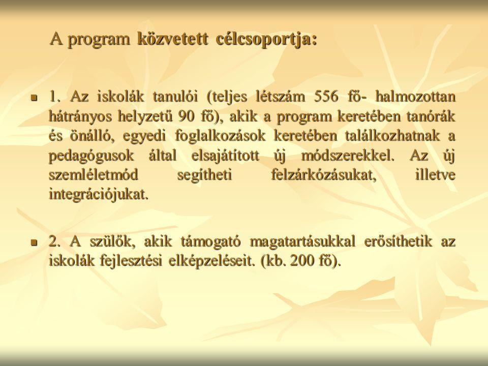 A program közvetett célcsoportja: 1.
