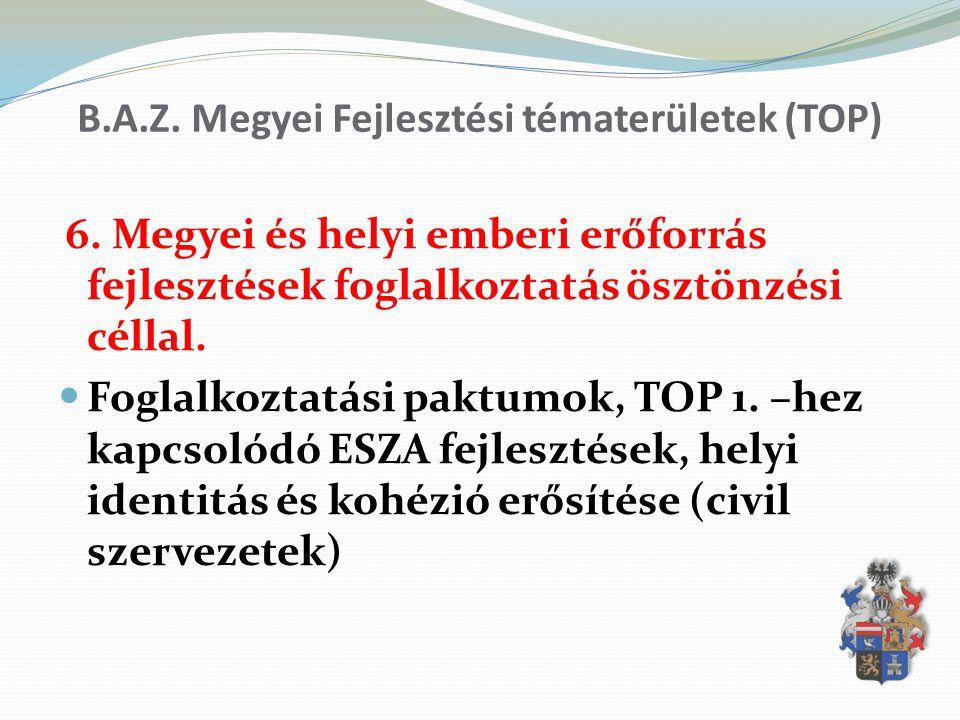 B.A.Z. Megyei Fejlesztési tématerületek (TOP) 6. Megyei és helyi emberi erőforrás fejlesztések foglalkoztatás ösztönzési céllal. Foglalkoztatási paktu