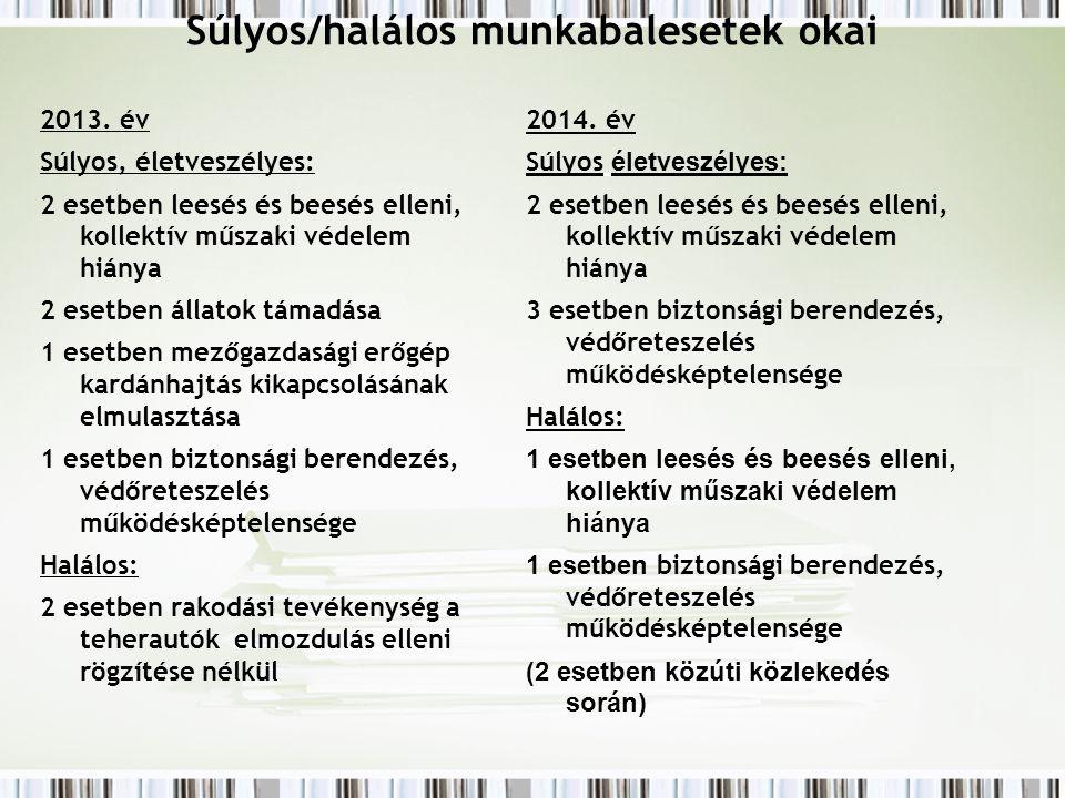 Súlyos/halálos munkabalesetek okai 2013. év Súlyos, életveszélyes: 2 esetben leesés és beesés elleni, kollektív műszaki védelem hiánya 2 esetben állat