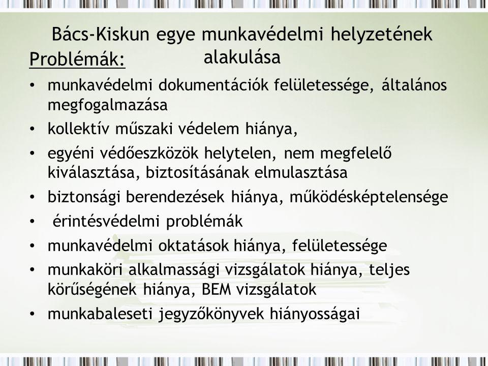 Bács-Kiskun egye munkavédelmi helyzetének alakulása Problémák: munkavédelmi dokumentációk felületessége, általános megfogalmazása kollektív műszaki vé