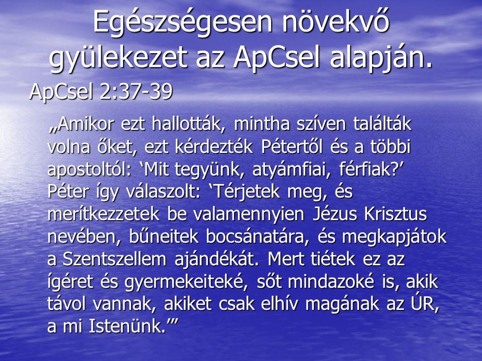 """Egészségesen növekvő gyülekezet az ApCsel alapján. ApCsel 2:37-39 """" Amikor ezt hallották, mintha szíven találták volna őket, ezt kérdezték Pétertől és"""