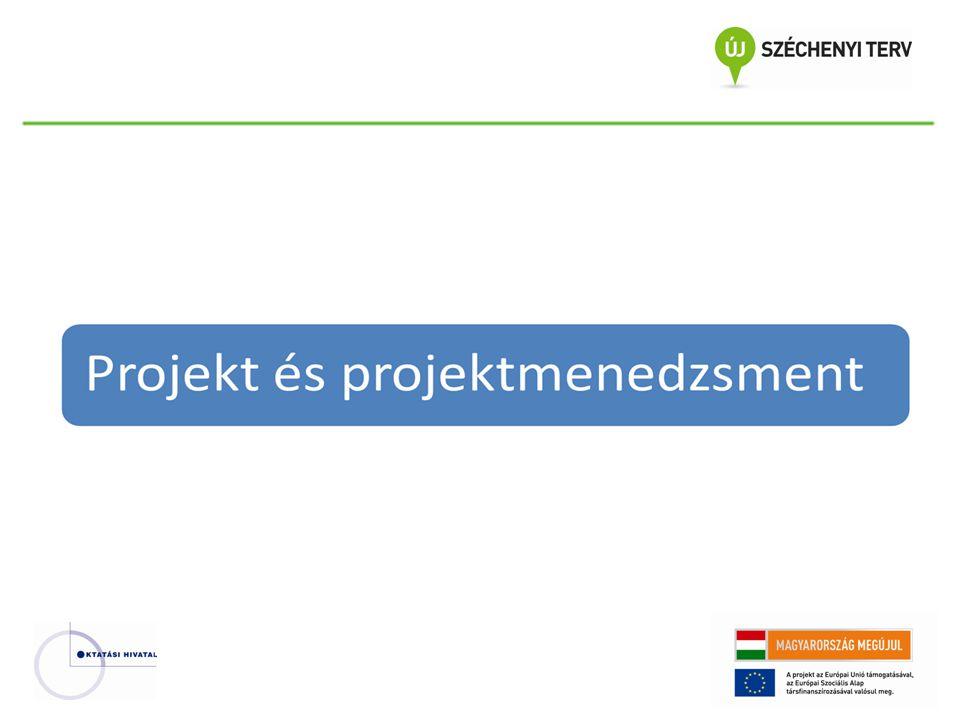Projekt és projektmenedzsment Ki valósított meg projektet?