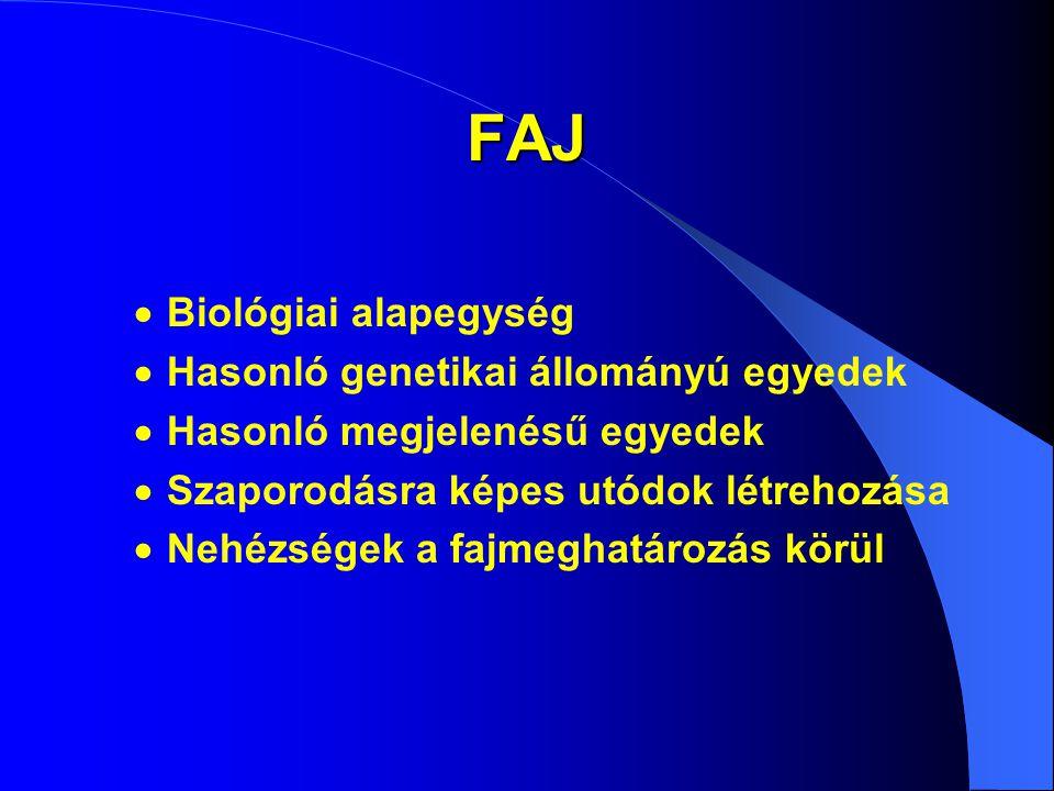 FAJ  Biológiai alapegység  Hasonló genetikai állományú egyedek  Hasonló megjelenésű egyedek  Szaporodásra képes utódok létrehozása  Nehézségek a fajmeghatározás körül