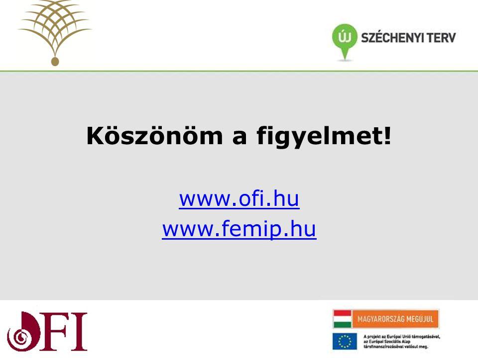 Köszönöm a figyelmet! www.ofi.hu www.femip.hu