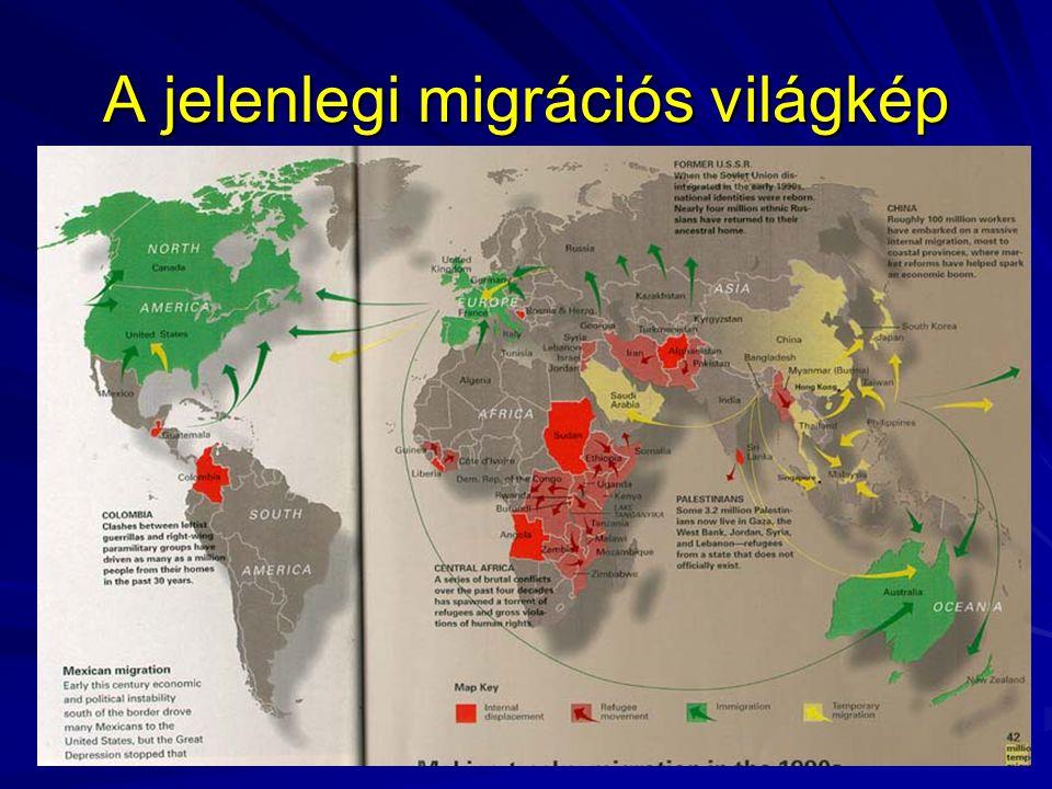 A jelenlegi migrációs világkép