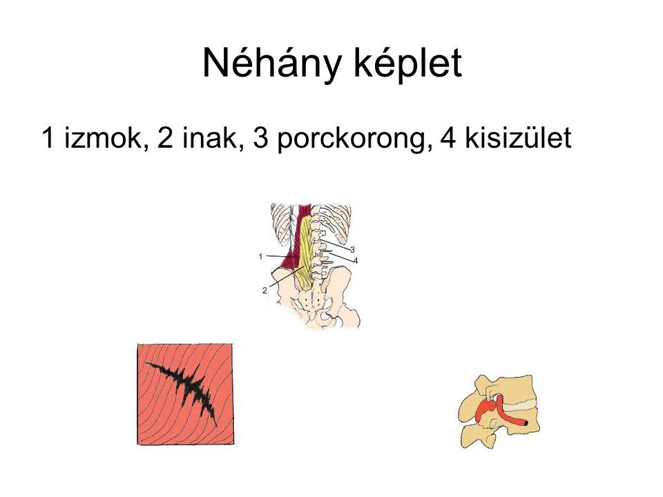 Műtéti indikáció Sürgős műtét: bénulás, vizelési zavar, lovaglónadrág szerű érzészavar Relatív sürgős.néhány nap múlva fellépő bénulás, nagy fájdalom Műtéti ok: ha konzervatív kezelés mellett nem szűnik a fájdalom, normális életvitel nem lehetséges