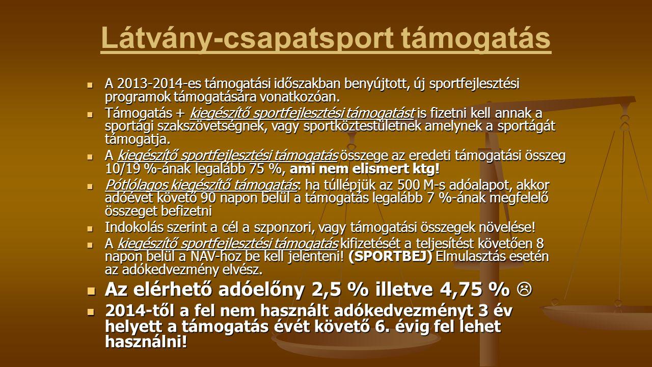Látvány-csapatsport támogatás A 2013-2014-es támogatási időszakban benyújtott, új sportfejlesztési programok támogatására vonatkozóan.