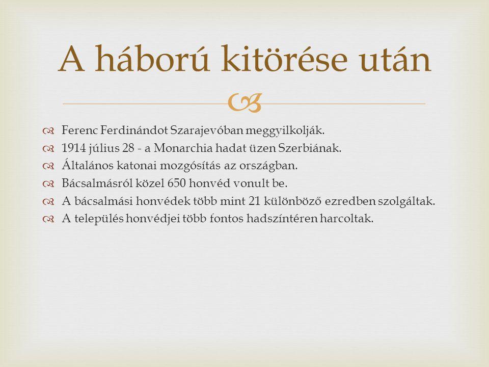  Itt harcoltak Bácsalmás honvédjei  Gorlicei áttörés  Przemysl visszafoglalása  Lemberg visszavétele  Újévi csata (Besszarábia, Kelet - Galícia)  Bruszilov- offenzíva  Románia meghódítása  Kerenszkij-hadjárat  A második szerb hadjárat  Szerbia meghódítása  Montenegró meghódítása  Albániai hadjárat