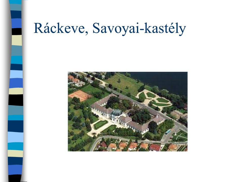 Ráckeve, Savoyai-kastély