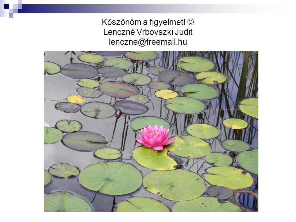 Köszönöm a figyelmet! Lenczné Vrbovszki Judit lenczne@freemail.hu