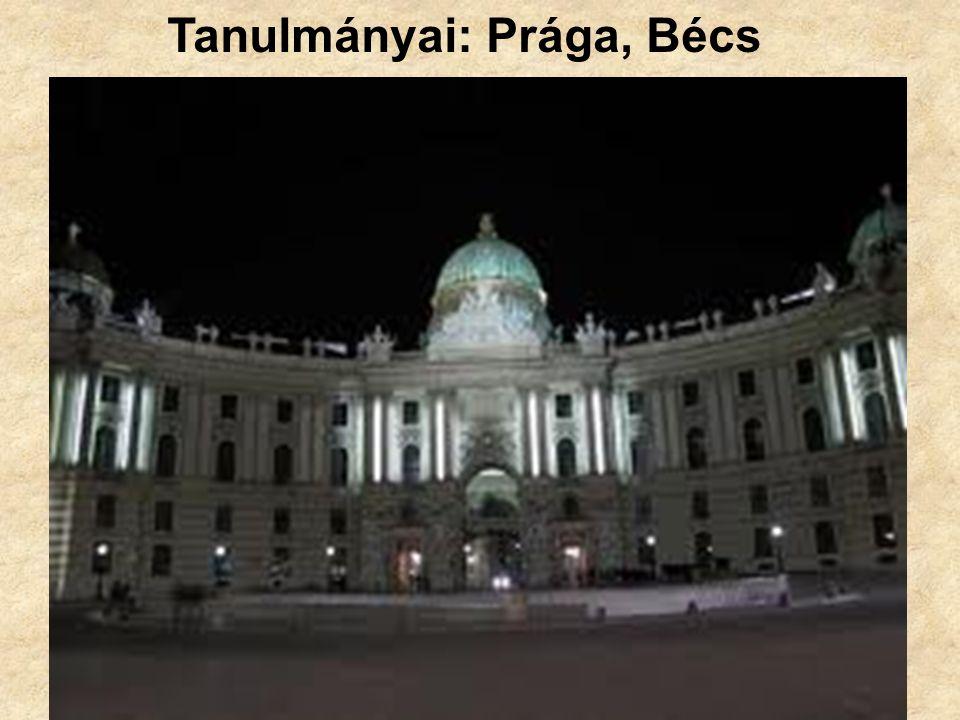 Tanulmányai: Prága, Bécs