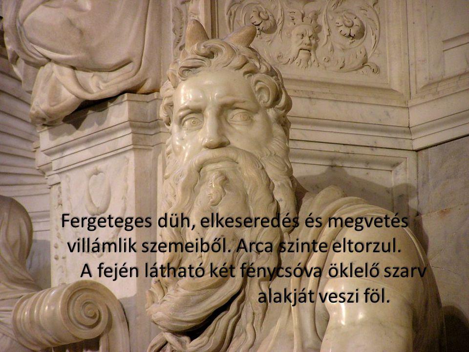 """Michelangelo abban a drámai pillanatban ábrázolja a """"választott nép"""" istenküldötte vezetőjét és prófétáját, amikor ez a 40 napos, Istennel való beszél"""