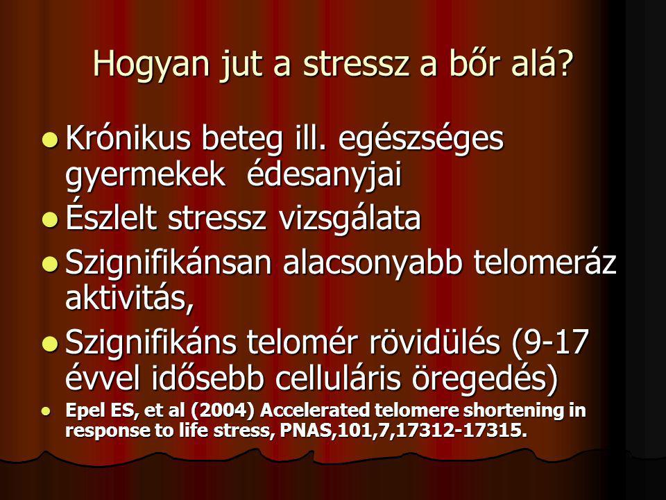 Az általános adaptációs szindróma három fázisa közül: A stressz modellek általában az akut vagy viszonylag rövid tartamú stresszorok hatását vizsgálják A harmadik, kimerülési fázis, a krónikus stressz a károsító hatások szempontjából a meghatározó Kopp MS, Réthelyi J (2004): Where psychology meets physiology: chronic stress and premature mortality- the Central-Eastern-European health paradox, Brain Research Bulletin,62,351-367.