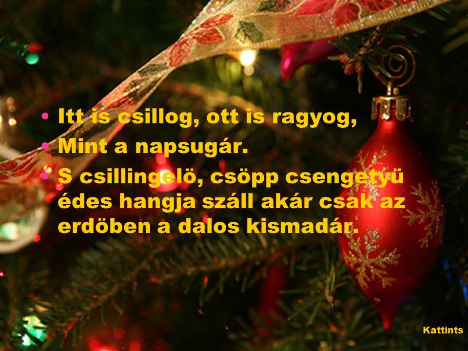 Igazi ünnep az, mikor egész évben béke és szeretet honol a házon, És azzal, kit szívből szeretünk, nézzük együtt a csillogó fényeket a fákon.