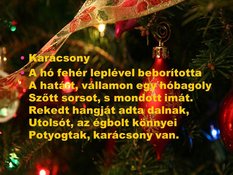 Karácsony A hó fehér leplével beborította A határt, vállamon egy hóbagoly Szőtt sorsot, s mondott imát.