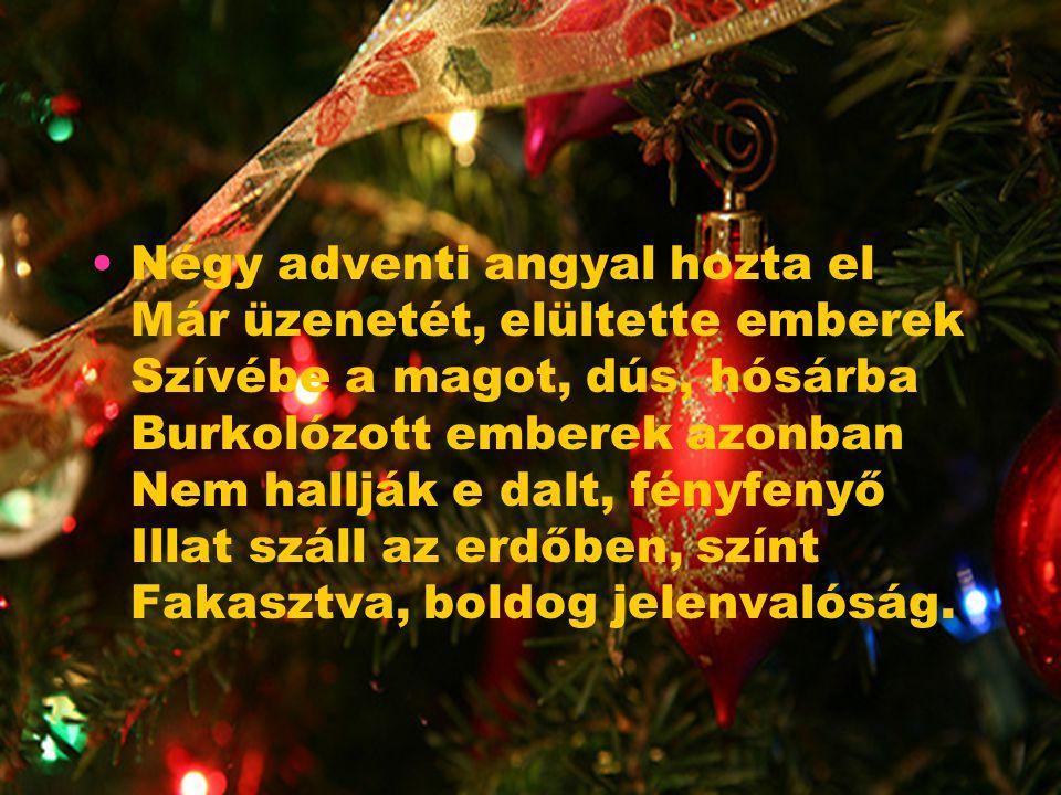 Karácsony A hó fehér leplével beborította A határt, vállamon egy hóbagoly Szőtt sorsot, s mondott imát. Rekedt hangját adta dalnak, Utolsót, az égbolt