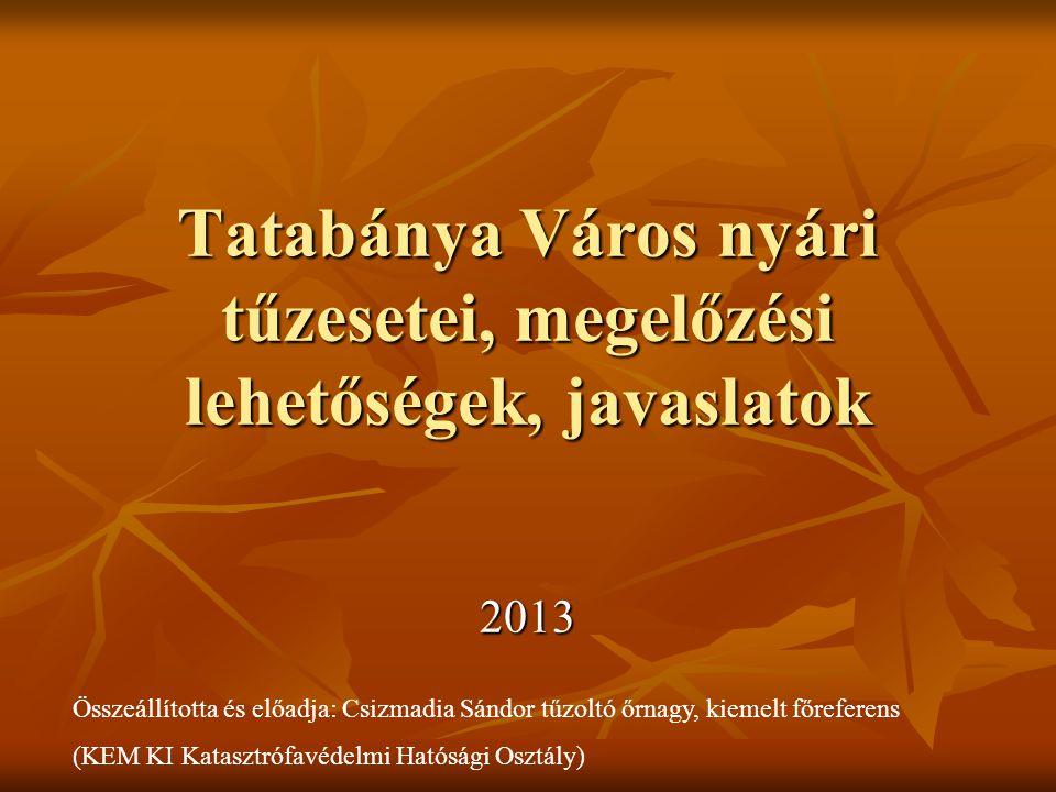 Tatabánya Város nyári tűzesetei, megelőzési lehetőségek, javaslatok 2013 Összeállította és előadja: Csizmadia Sándor tűzoltó őrnagy, kiemelt főreferen