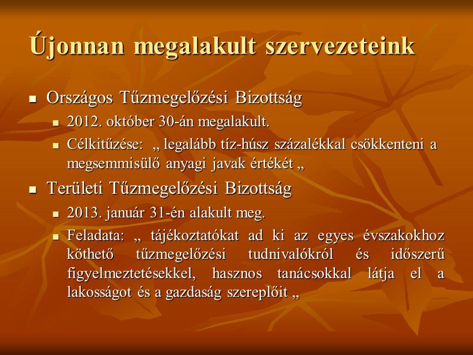 Újonnan megalakult szervezeteink Országos Tűzmegelőzési Bizottság Országos Tűzmegelőzési Bizottság 2012. október 30-án megalakult. 2012. október 30-án