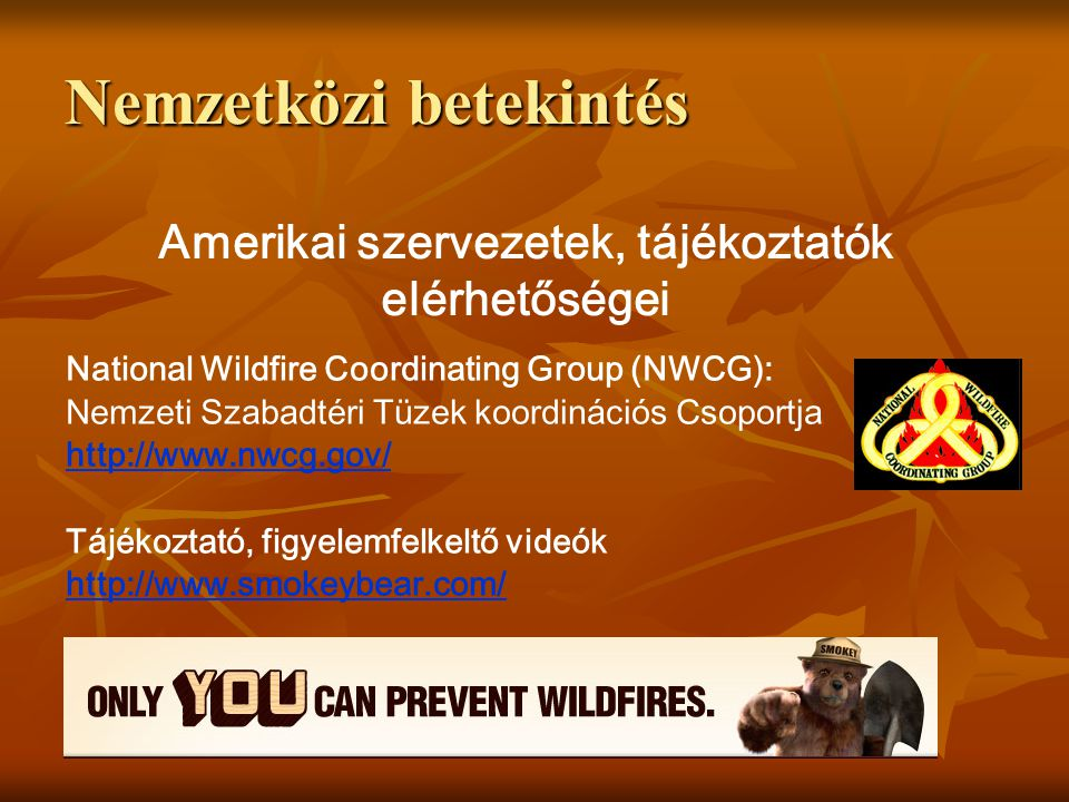 Amerikai szervezetek, tájékoztatók elérhetőségei National Wildfire Coordinating Group (NWCG): Nemzeti Szabadtéri Tüzek koordinációs Csoportja http://www.nwcg.gov/ Tájékoztató, figyelemfelkeltő videók http://www.smokeybear.com/ Nemzetközi betekintés