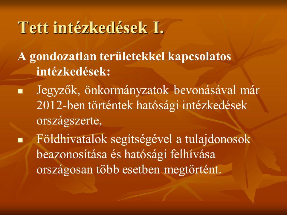 Tett intézkedések I. A gondozatlan területekkel kapcsolatos intézkedések: Jegyzők, önkormányzatok bevonásával már 2012-ben történtek hatósági intézked
