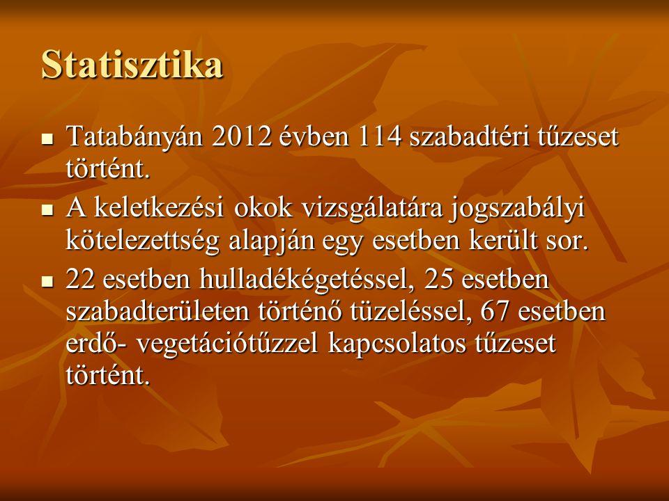 Statisztika Tatabányán 2012 évben 114 szabadtéri tűzeset történt. Tatabányán 2012 évben 114 szabadtéri tűzeset történt. A keletkezési okok vizsgálatár