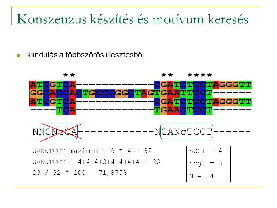 Konszenzus készítés és motívum keresés kiindulás a többszörös illesztésből NNCNtCA------------NGANcTCCT------ GANcTCCT = 4+4-4+3+4+4+4+4 = 23 GANcTCCT maximum = 8 * 4 = 32 ACGT = 4 acgt = 3 N = -4 23 / 32 * 100 = 71,875%