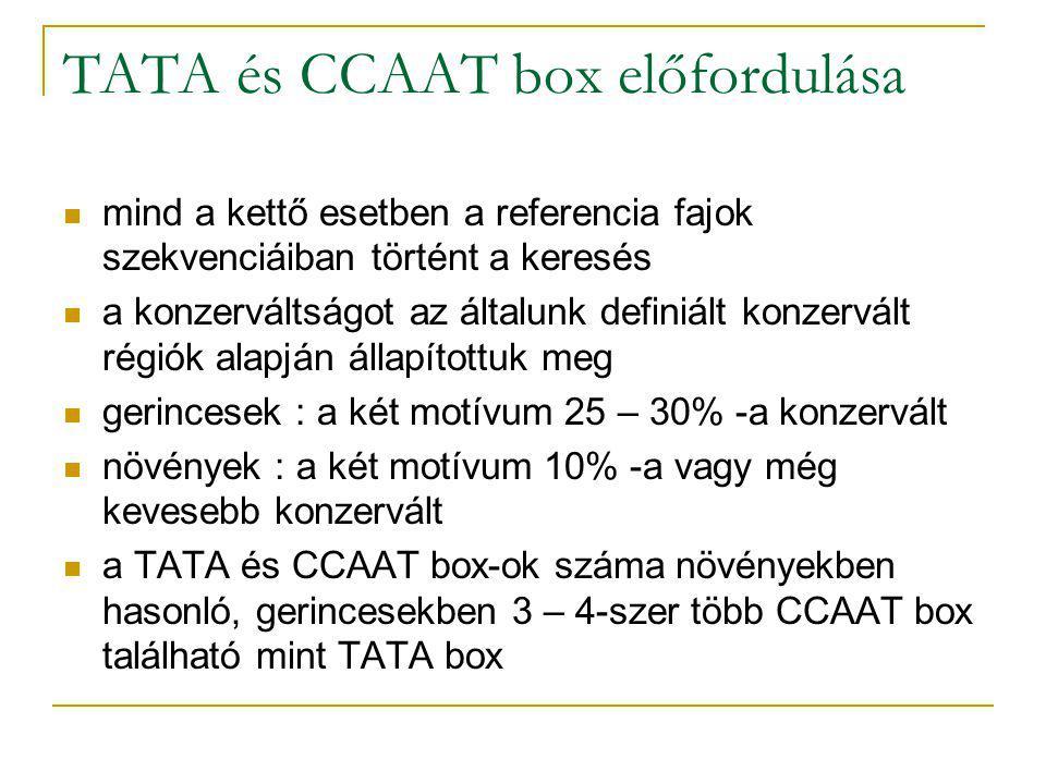 TATA és CCAAT box előfordulása mind a kettő esetben a referencia fajok szekvenciáiban történt a keresés a konzerváltságot az általunk definiált konzervált régiók alapján állapítottuk meg gerincesek : a két motívum 25 – 30% -a konzervált növények : a két motívum 10% -a vagy még kevesebb konzervált a TATA és CCAAT box-ok száma növényekben hasonló, gerincesekben 3 – 4-szer több CCAAT box található mint TATA box