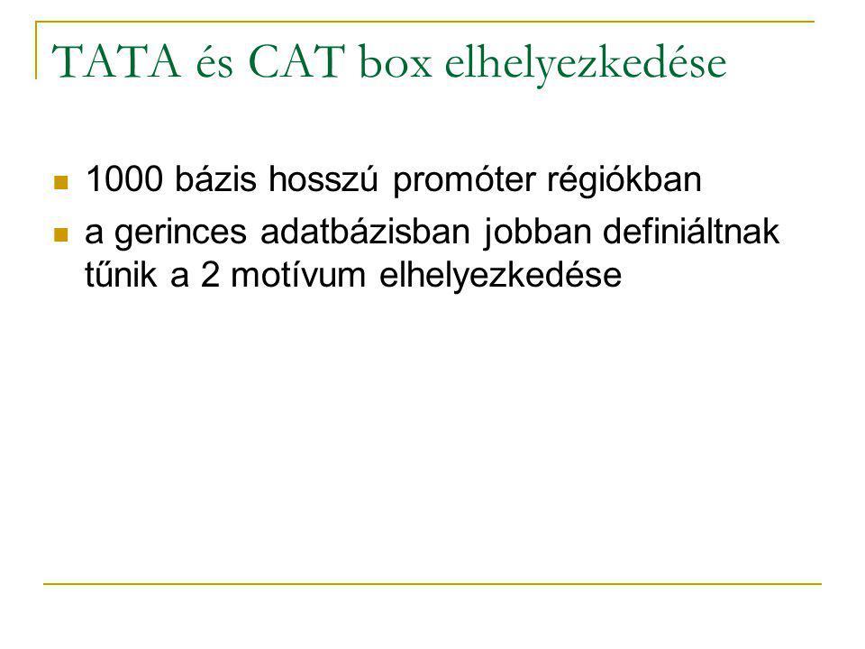 TATA és CAT box elhelyezkedése 1000 bázis hosszú promóter régiókban a gerinces adatbázisban jobban definiáltnak tűnik a 2 motívum elhelyezkedése