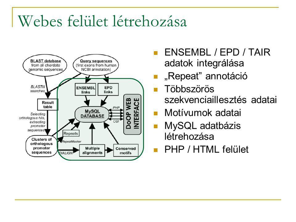 """Webes felület létrehozása ENSEMBL / EPD / TAIR adatok integrálása """"Repeat annotáció Többszörös szekvenciaillesztés adatai Motívumok adatai MySQL adatbázis létrehozása PHP / HTML felület"""