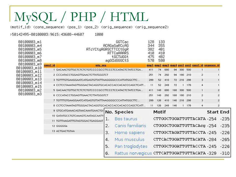 MySQL / PHP / HTML