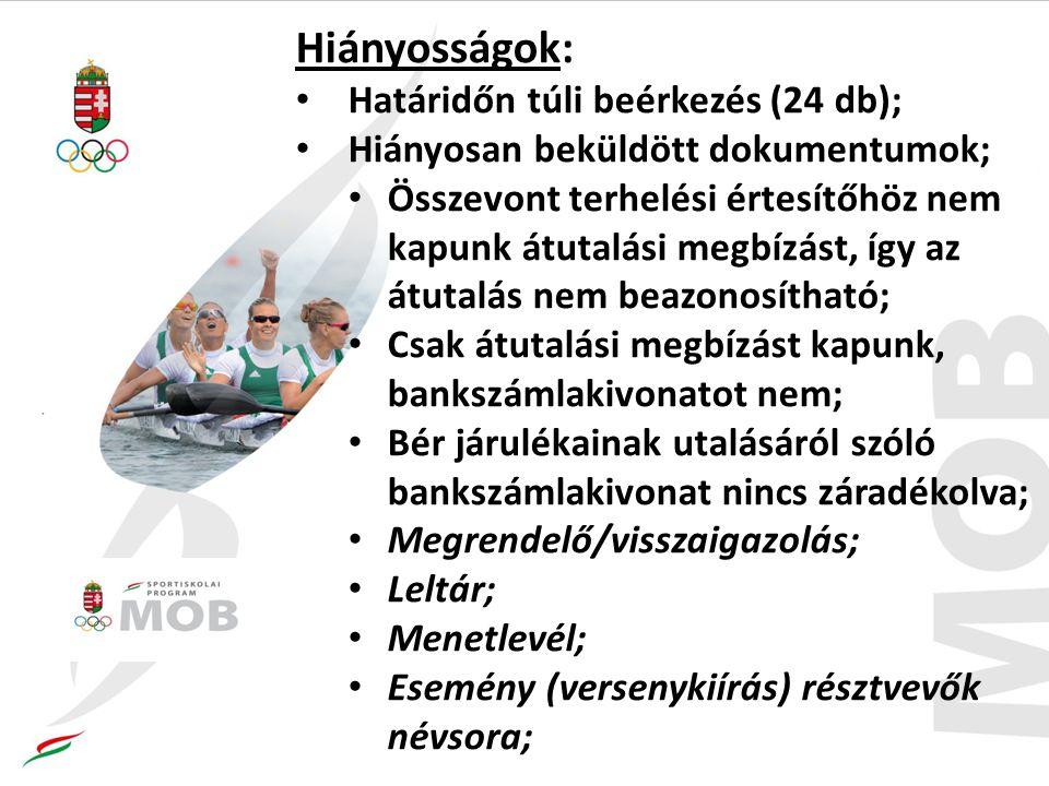 Hiányosságok: Határidőn túli beérkezés (24 db); Hiányosan beküldött dokumentumok; Összevont terhelési értesítőhöz nem kapunk átutalási megbízást, így az átutalás nem beazonosítható; Csak átutalási megbízást kapunk, bankszámlakivonatot nem; Bér járulékainak utalásáról szóló bankszámlakivonat nincs záradékolva; Megrendelő/visszaigazolás; Leltár; Menetlevél; Esemény (versenykiírás) résztvevők névsora;
