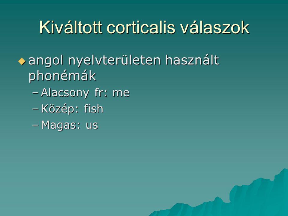 Kiváltott corticalis válaszok  angol nyelvterületen használt phonémák –Alacsony fr: me –Közép: fish –Magas: us
