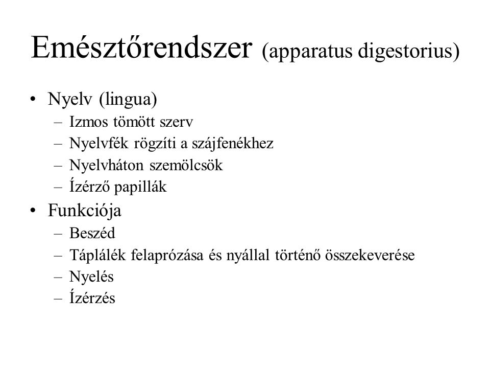 Emésztőrendszer (apparatus digestorius) Nyelv (lingua) –Izmos tömött szerv –Nyelvfék rögzíti a szájfenékhez –Nyelvháton szemölcsök –Ízérző papillák Fu