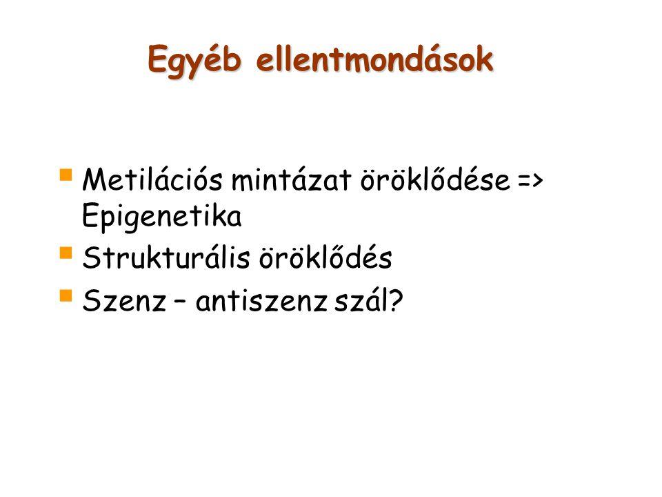 Egyéb ellentmondások  Metilációs mintázat öröklődése => Epigenetika  Strukturális öröklődés  Szenz – antiszenz szál?
