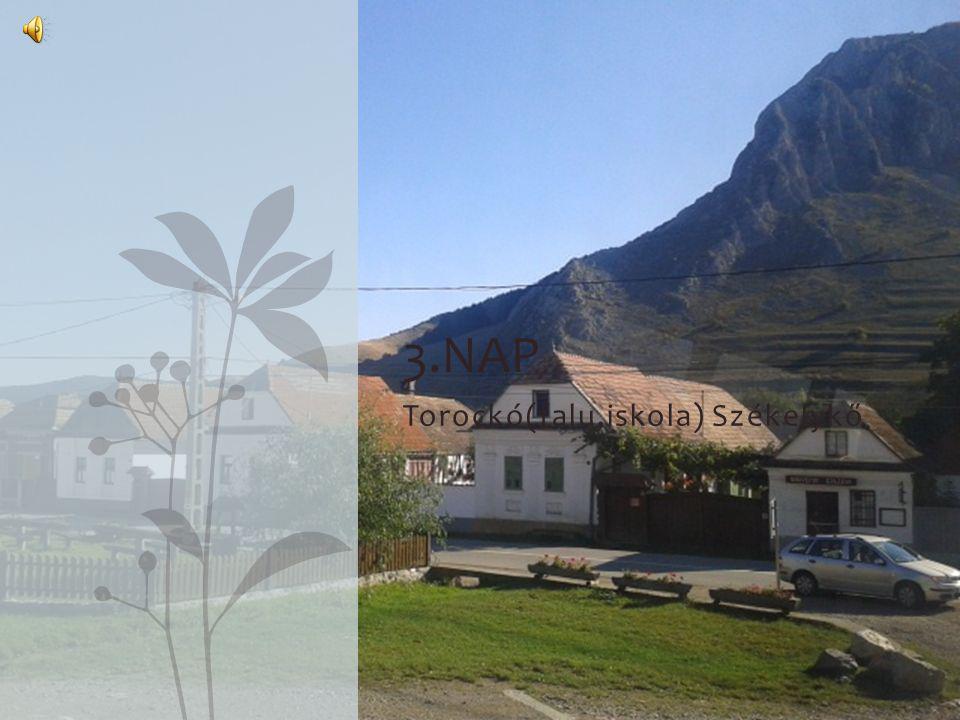 Torockó(falu,iskola) Székelykő 3.NAP