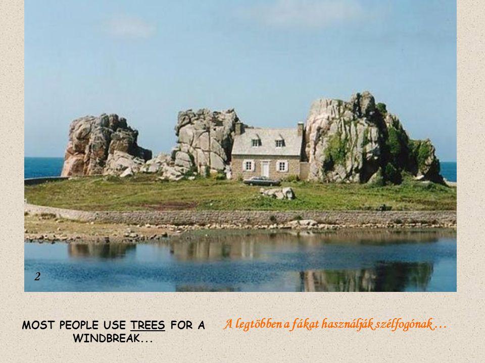 MOST PEOPLE USE TREES FOR A WINDBREAK... 2 A legtöbben a fákat használják szélfogónak …