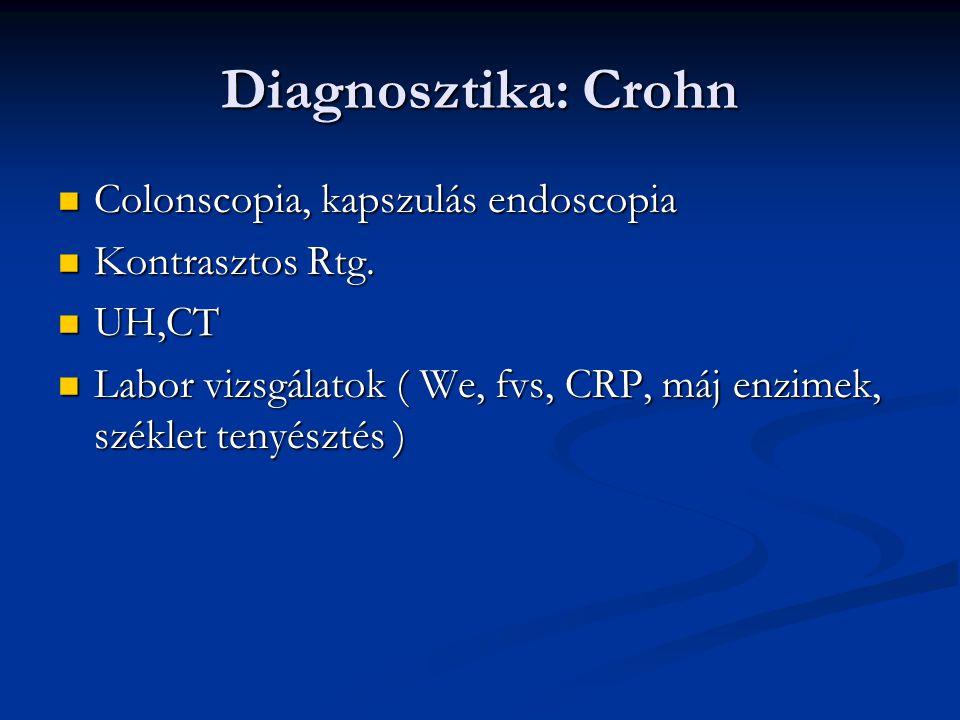 Diagnosztika: Crohn Colonscopia, kapszulás endoscopia Colonscopia, kapszulás endoscopia Kontrasztos Rtg. Kontrasztos Rtg. UH,CT UH,CT Labor vizsgálato