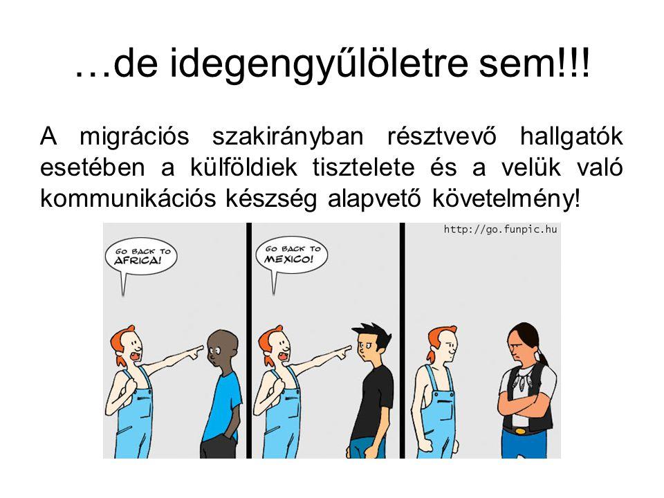 …de idegengyűlöletre sem!!! A migrációs szakirányban résztvevő hallgatók esetében a külföldiek tisztelete és a velük való kommunikációs készség alapve