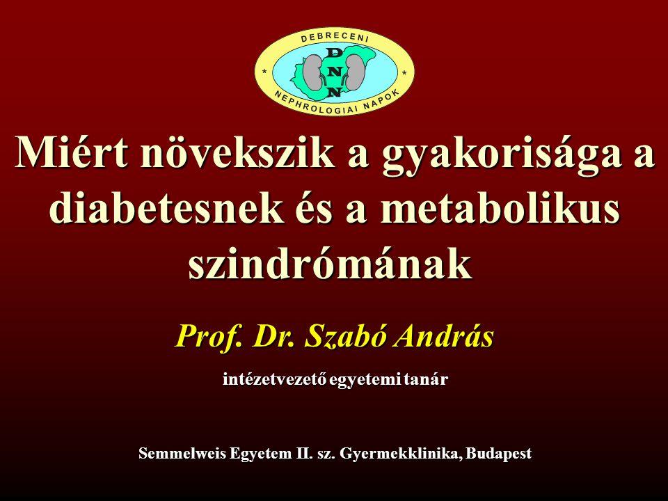 Miért növekszik a gyakorisága a diabetesnek és a metabolikus szindrómának Prof. Dr. Szabó András intézetvezető egyetemi tanár Semmelweis Egyetem II. s